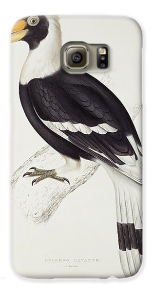 Great Hornbill Galaxy S6 Case by John Gould