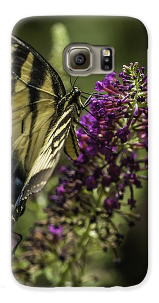 Butterflies Along The Blue Ridge Galaxy S6 Case