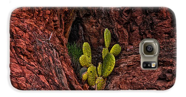 Cactus Dwelling Galaxy S6 Case by Mark Myhaver