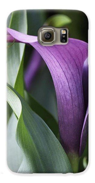 Lily Galaxy S6 Case - Calla Lily In Purple Ombre by Rona Black