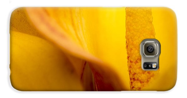 Galaxy S6 Case featuring the photograph Calla Lily by Sebastian Musial