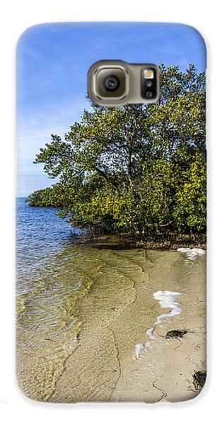 Mangrove Galaxy S6 Case - Calm Waters On The Gulf by Marvin Spates