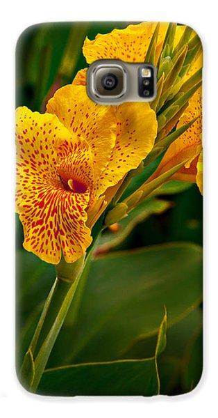 Canna Blossom Galaxy S6 Case