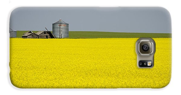 Canola Field Galaxy S6 Case