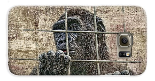 Ape Galaxy S6 Case - Captivity by Tom Mc Nemar