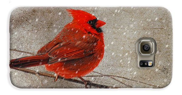 Cardinal In Snow Galaxy S6 Case by Lois Bryan