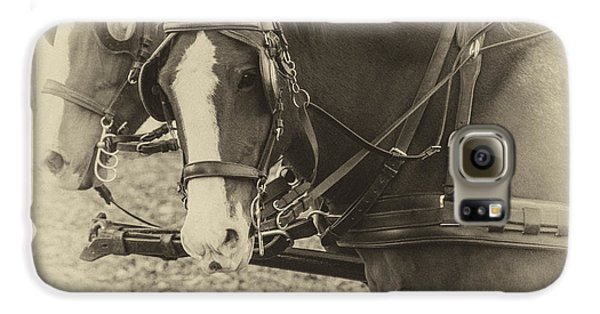 Carriage Horses II Galaxy S6 Case