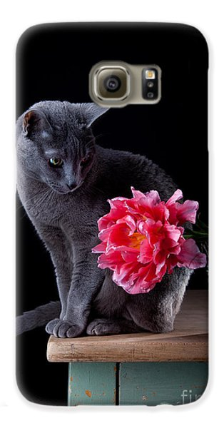 Tulip Galaxy S6 Case - Cat And Tulip by Nailia Schwarz