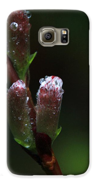 Catkin Raindrops Galaxy S6 Case