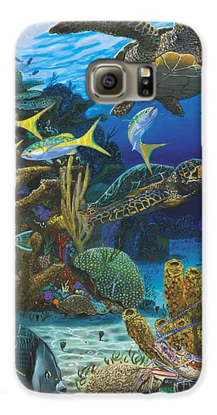 Fish Galaxy S6 Case - Cayman Turtles Re0010 by Carey Chen