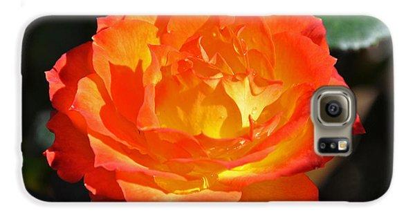 Charisma Rose Galaxy S6 Case