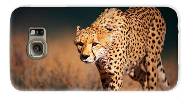 Cheetah Approaching From The Front Galaxy S6 Case