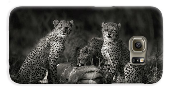 Cheetah Cubs Galaxy S6 Case