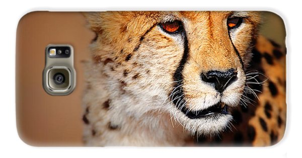 Cheetah Portrait Galaxy S6 Case by Johan Swanepoel