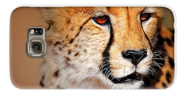 Cheetah Portrait Galaxy S6 Case