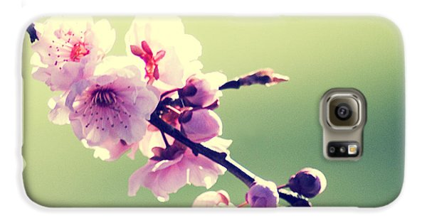 Galaxy S6 Case featuring the photograph Cherry Blooms by Yulia Kazansky