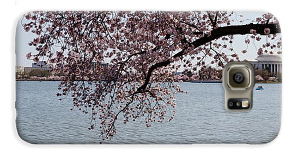Cherry Blossom Trees With The Jefferson Galaxy S6 Case by Panoramic Images