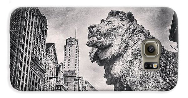 Art Institute Of Chicago Lion Picture Galaxy S6 Case