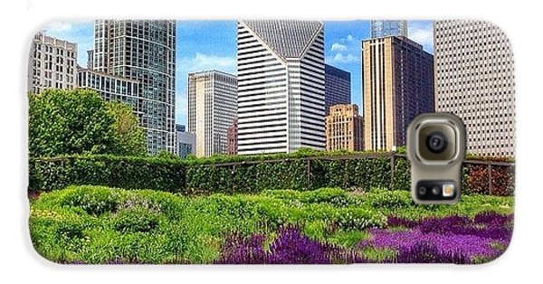 City Galaxy S6 Case - Chicago Skyline At Lurie Garden by Paul Velgos