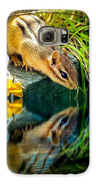 Chipmunk Reflection Galaxy S6 Case by Bob Orsillo