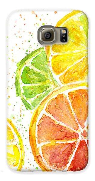Citrus Fruit Watercolor Galaxy S6 Case