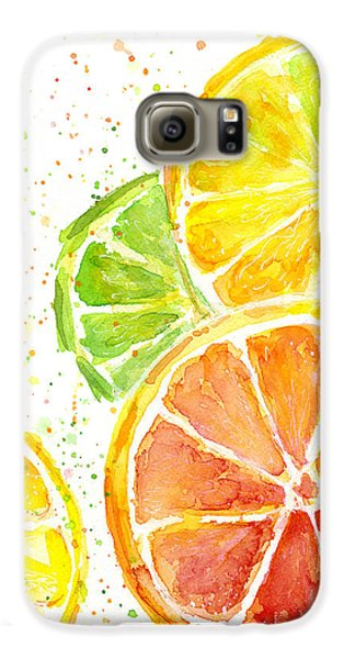 Citrus Fruit Watercolor Galaxy S6 Case by Olga Shvartsur
