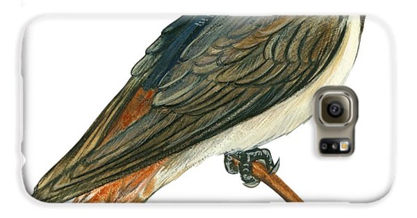 Cliff Swallow  Galaxy S6 Case