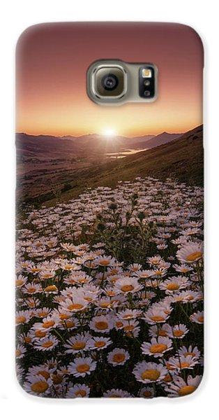 Daisy Galaxy S6 Case - Closer To The Sun by Sergio Abevilla
