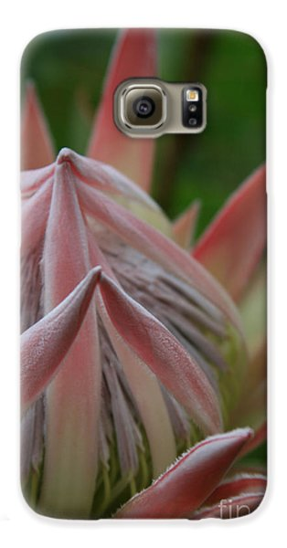 Cloths Of Heaven  Galaxy S6 Case