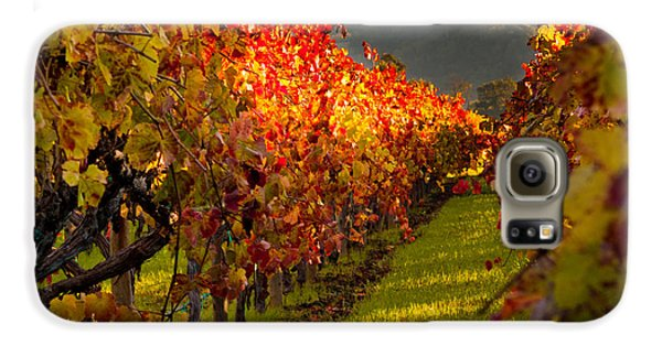 Color On The Vine Galaxy S6 Case