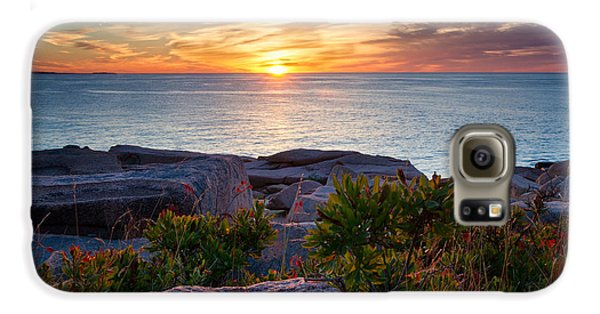 Otter Galaxy S6 Case - Colors Of Sunrise by Darylann Leonard Photography