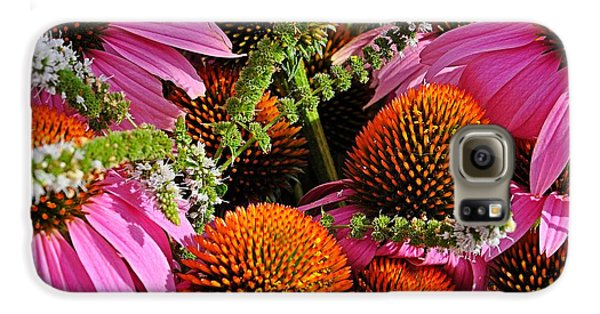 Cone Flowers And Mint Galaxy S6 Case
