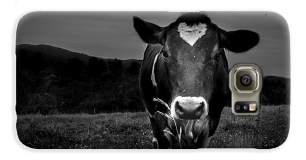 Cow Galaxy S6 Case by Bob Orsillo