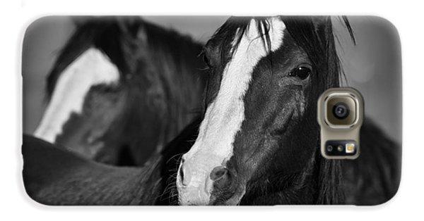 Curious Horses Galaxy S6 Case