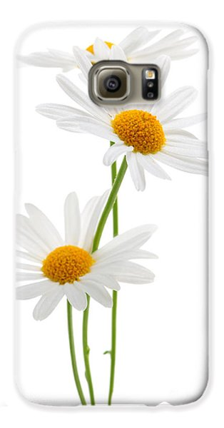 Daisies On White Background Galaxy S6 Case