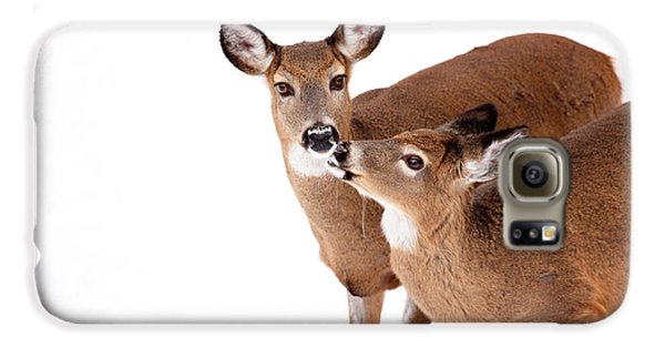 Deer Kisses Galaxy S6 Case