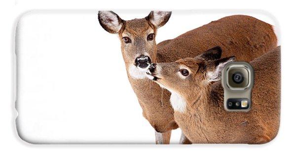 Deer Kisses Galaxy S6 Case by Karol Livote