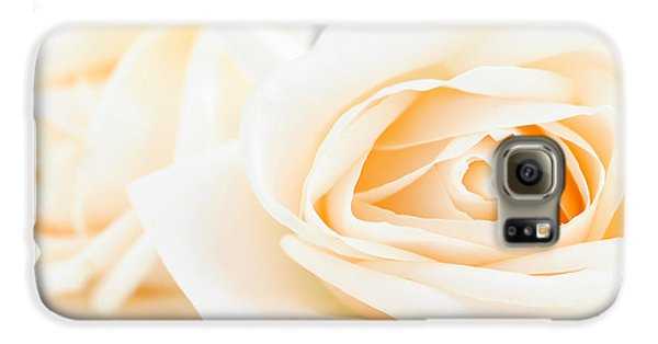 Rose Galaxy S6 Case - Delicate Beige Roses by Elena Elisseeva