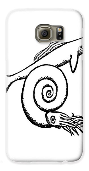 Devonian Shark And Ammonoid Galaxy S6 Case by Richard Bizley