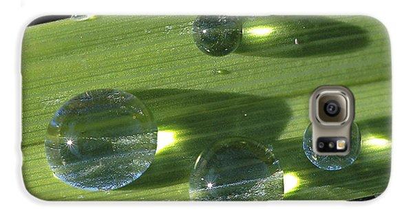 Dew Drops On Leaf Galaxy S6 Case