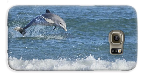 Dolphin In Surf Galaxy S6 Case