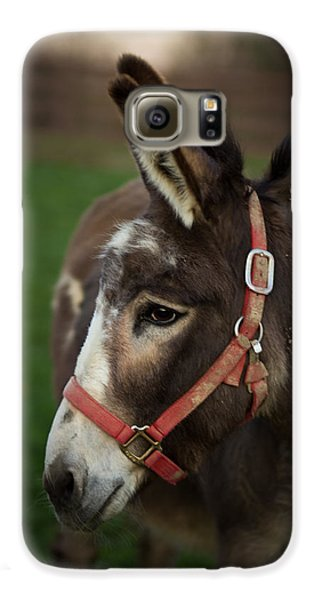 Donkey Galaxy S6 Case by Shane Holsclaw