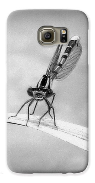 Galaxy S6 Case featuring the photograph Donna The Damselfly by Karen Shackles