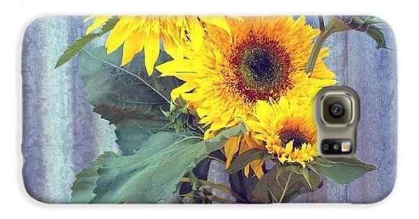 Summer Galaxy S6 Case - Don't You Just Love Summertime? by Blenda Studio