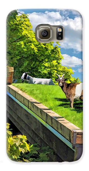 Door County Al Johnsons Swedish Restaurant Goats Galaxy S6 Case by Christopher Arndt
