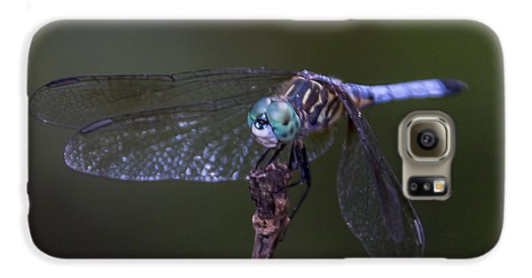 Dragonfly Galaxy S6 Case