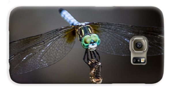 Dragonfly Wings Galaxy S6 Case