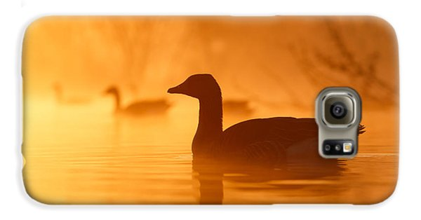Goose Galaxy S6 Case - Early Morning Mood by Roeselien Raimond
