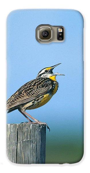 Eastern Meadowlark Galaxy S6 Case by Paul J. Fusco