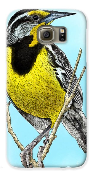 Eastern Meadowlark Galaxy S6 Case by Roger Hall